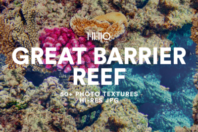 great barrier reef digital designs from hello creative and new visual things