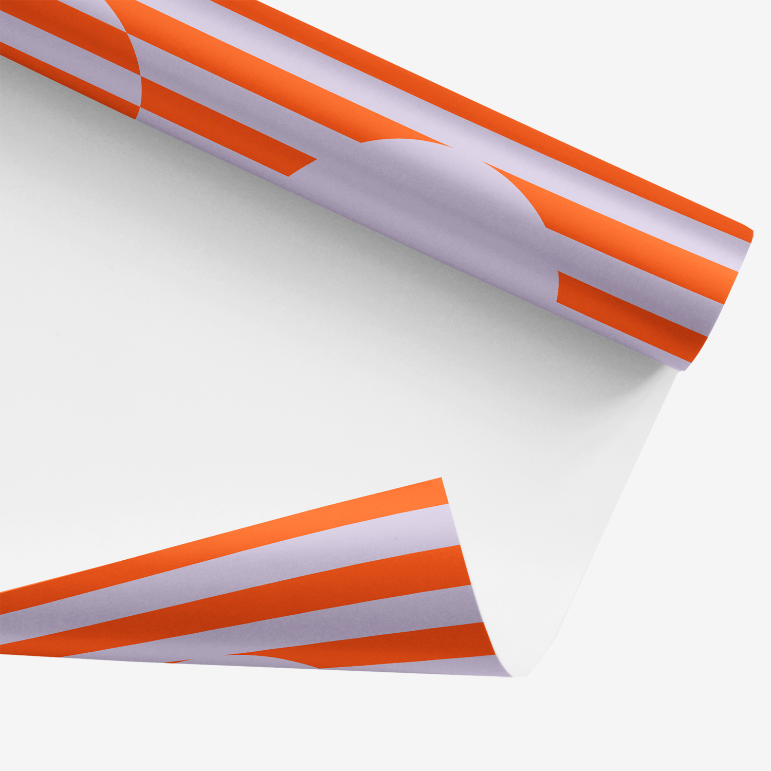 white underside of bold orange chromasect geometric wrapping paper